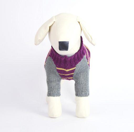 dog-jumper-otello