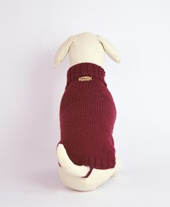 dog-jumper-otello