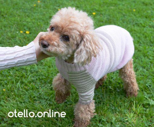 otello-dog-sweater