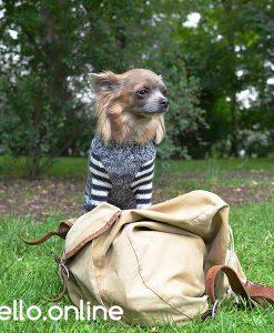 otello-hunde-pullover-qualitaet