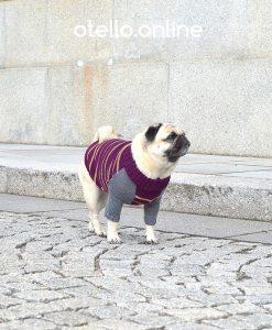 otello-hunde-pullover-mops