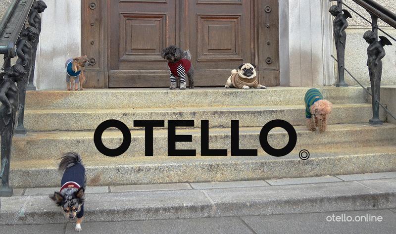 otello-hunde-pullover-stiege