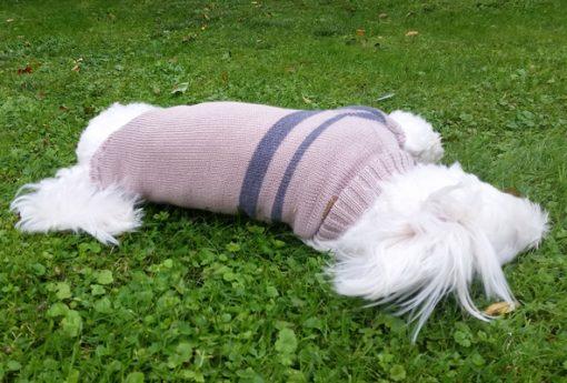 Otello. Hunde-Pullover Kronos