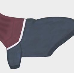 Otello. Hunde-Pullover Pylades