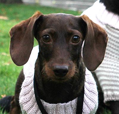 otello-pullover