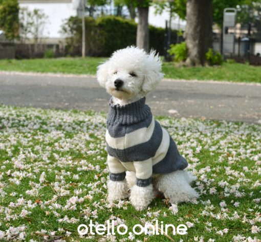 otello-dog-jumper