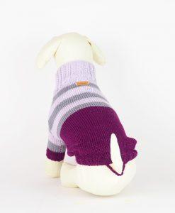 dog-jumper
